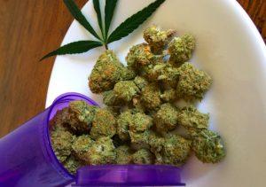 ReLeaf Herbal Coop Cannabis